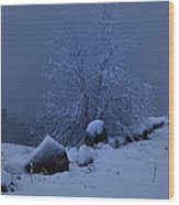 First Snow At First Light Wood Print