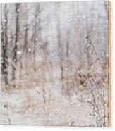 First Snow. Winter Mood Wood Print