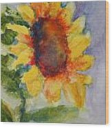 First Sunflower Wood Print by Terri Maddin-Miller