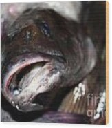 Fish Catch Wood Print