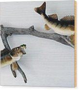 Fish Mount Set 03 A Wood Print