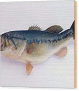 Fish Mount Set 09 A Wood Print