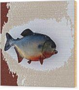 Fish Mount Set 12 C Wood Print