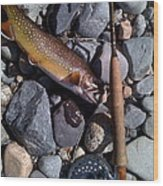 Fish Out Of Water Wood Print