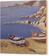 Fisherman's Boats Wood Print by Debra Piro