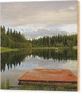 Fishing A Mirror Wood Print