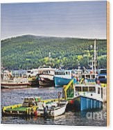 Fishing Boats In Newfoundland Wood Print