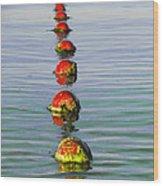Fishing Floats Wood Print