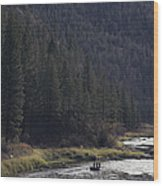 Fishing For Steelhead On The Salmon Wood Print