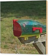 Fishing Lure Mailbox 1 Wood Print