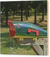 Fishing Lure Mailbox 2 Wood Print