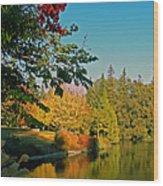 Flame Tree At Lake Spafford Wood Print