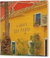 Flamenco Ana Maria Wood Print