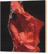 Flamenco Wood Print by Tim Kahane
