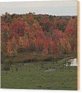 Flaming Foliage Autumn Pasture Wood Print