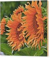 Flaming Sunflowers Wood Print