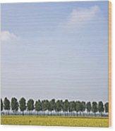 Flemish Landscape Wood Print by Frits Selier