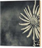 Fleur Jaune Wood Print