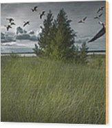 Flight Along The Bay Wood Print