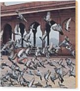 Flight Of Pigeons Inside The Jama Masjid In Delhi Wood Print