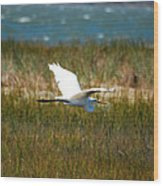 Flight Of The Egret Wood Print