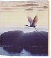 Flight Of The Egret V1 Wood Print