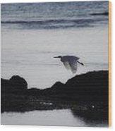 Flight Of The Egret V2 Wood Print