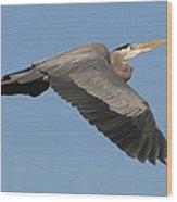 Flight Of The Great Blue Heron Wood Print