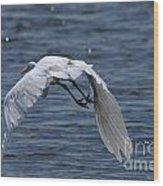 Flight Over The Lake 3 Wood Print