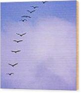 Flight Stripe Wood Print