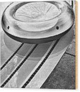Float Bw Palm Springs Wood Print