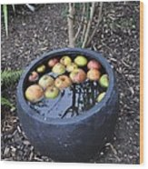 Floating Apples Wood Print