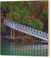Floating Dock Wood Print