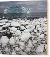 Floating Ice Shattered From Iceberg Wood Print