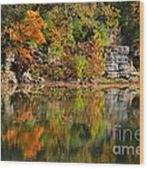Floating Leaves In Tranquility Wood Print