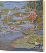 Floating Lillies Wood Print by Mohamed Hirji