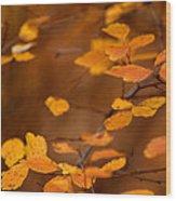 Floating On Orange Fall Leaves Wood Print