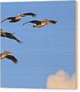 Flocked Wood Print