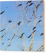 Flocking Crows Wood Print