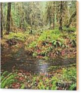 Flood In The Forest Wood Print