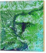 Flooding In Bangladesh Wood Print by Nasa