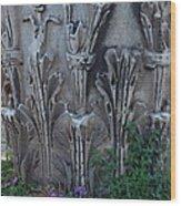 Flora Among The Ruins Wood Print