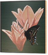 Floral Butterfly Dance Wood Print