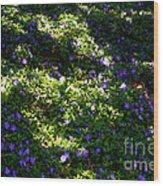 Floral Carpet Wood Print