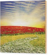 Floral Field On Sunset Wood Print