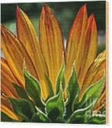 Floral Flaming Fingers Wood Print