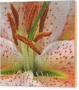 Floral Palatte Wood Print