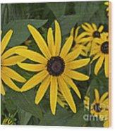 Floral Sunshine Wood Print