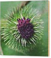 Floral1 Wood Print
