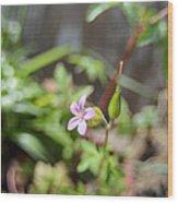 Floret Wood Print